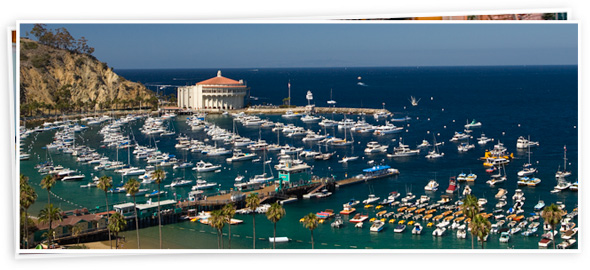 Summer Specials on Catalina Island